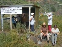Valle las Huertas (8).JPG